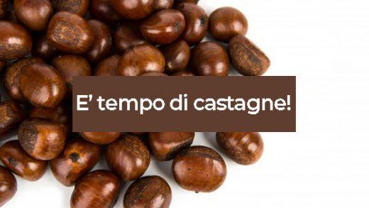 Castagne Come Tagliare, Cuocere, Cucinare, Pentole, Ricette