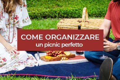 copertina_picnic perfetto