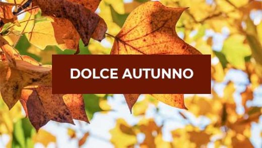 dolce autunno